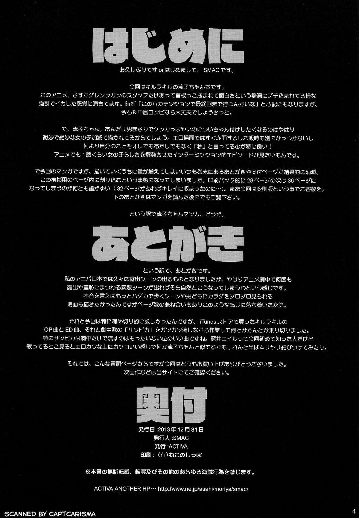 Hamidashi Ryuuko 3