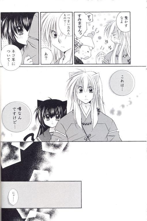 Neko Moe 10