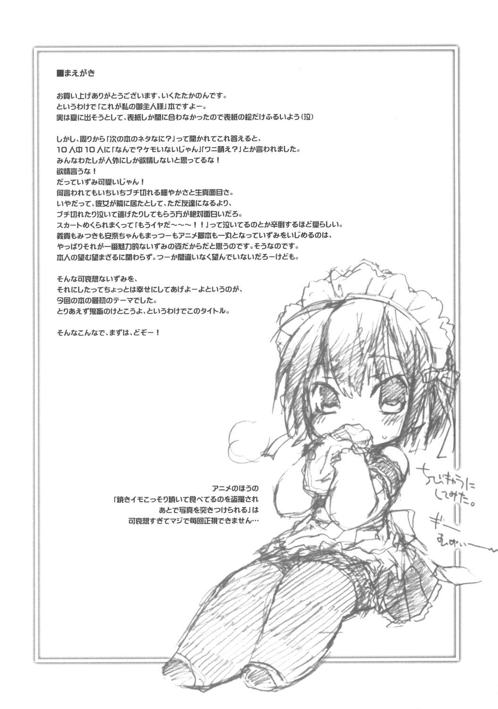 Goshujin-sama wa Kiokusoushitsu!? 2