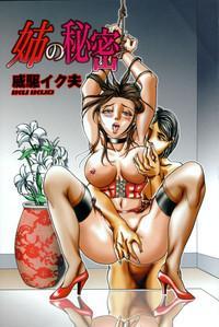 Ane no Himitsu 8