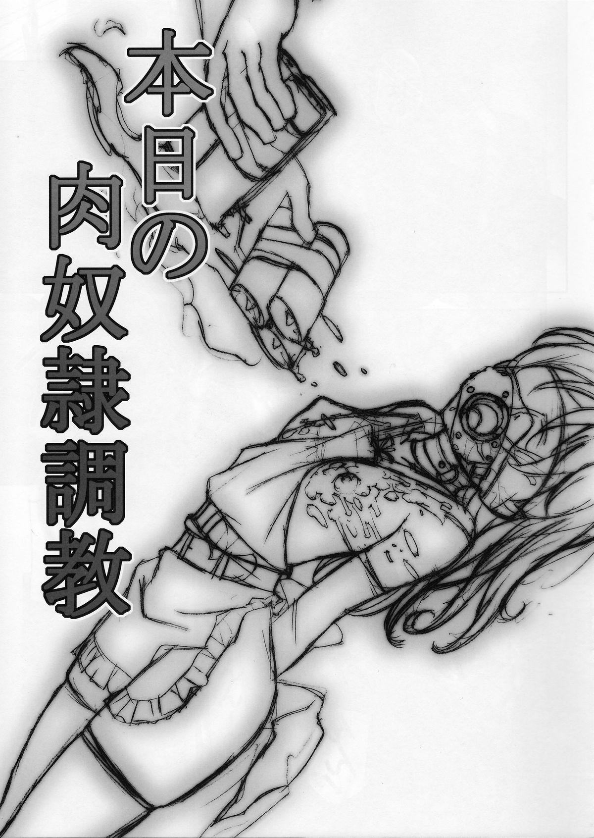 Honjitsu no Nikudorei Choukyou 1