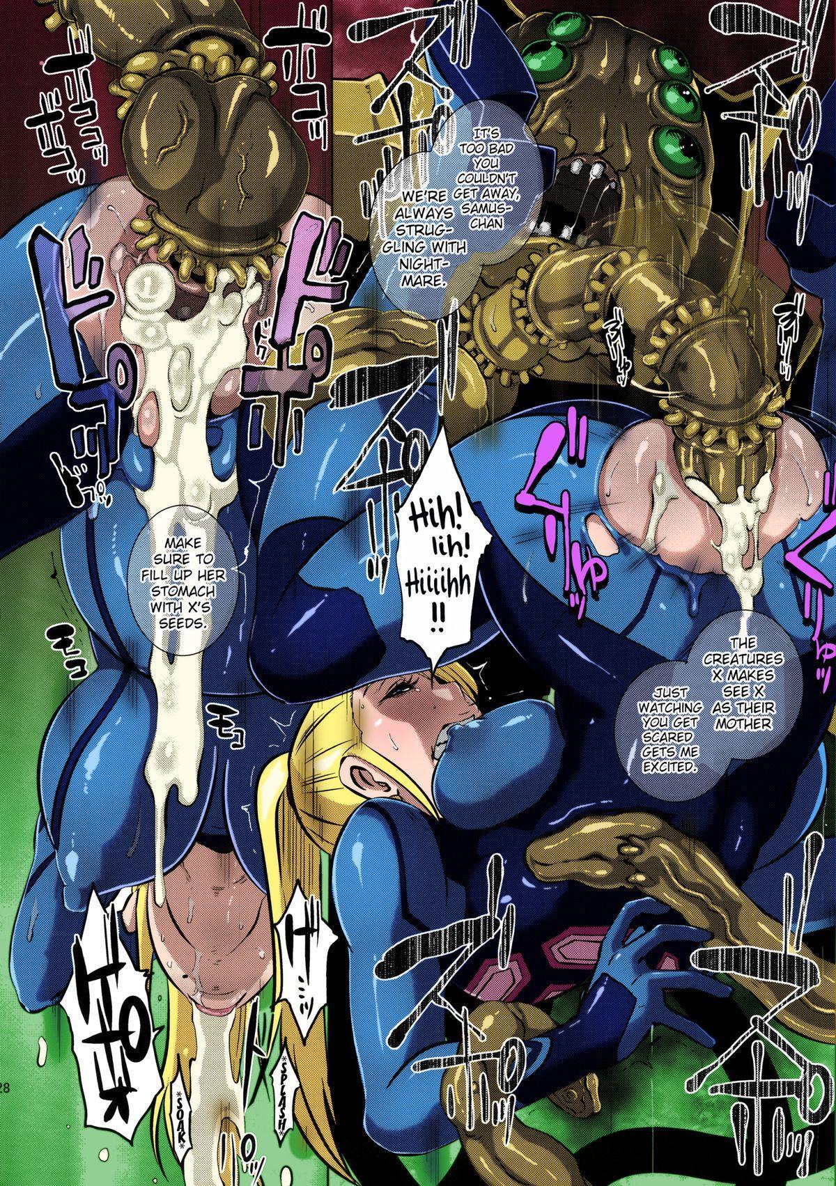 Metroid XXX 25