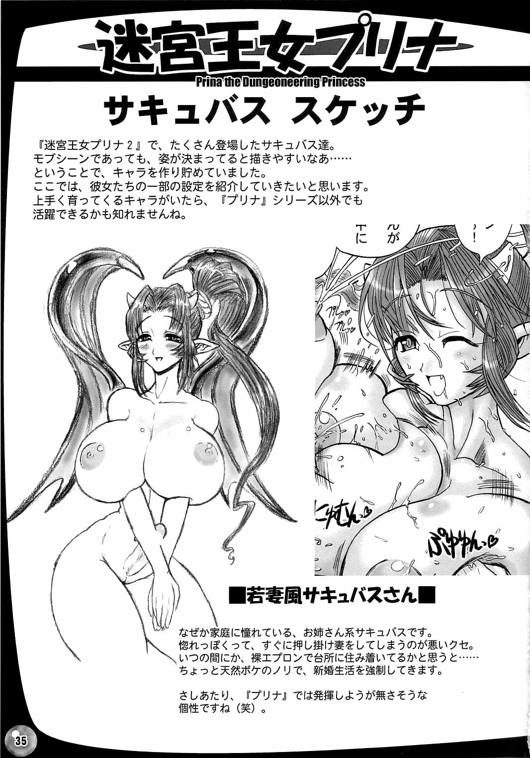 The Great Work of Alchemy Vol.15 - Meikyuu Oujo Prina 2 | Prina the Dungeoneering Princess 2 34