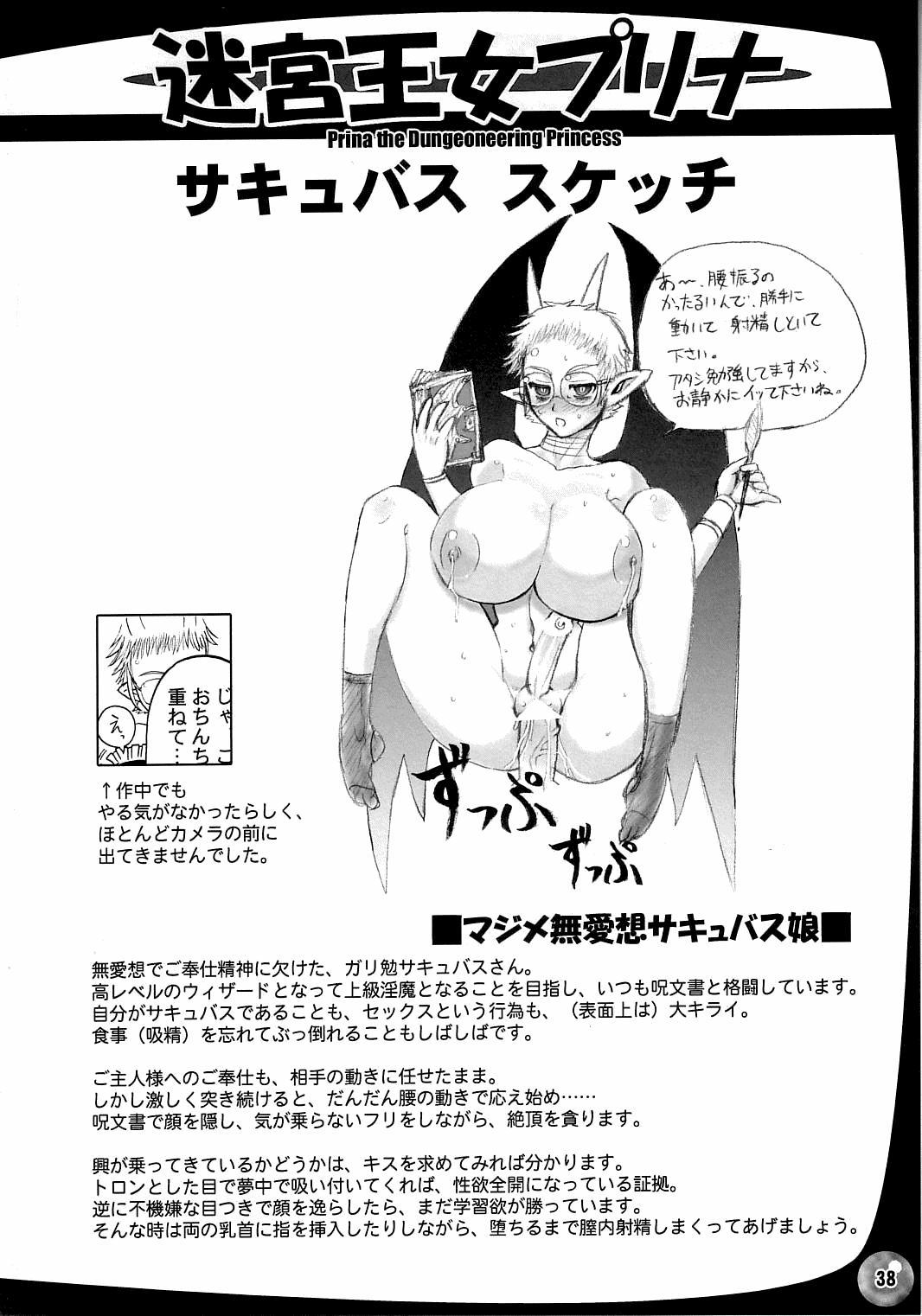 The Great Work of Alchemy Vol.15 - Meikyuu Oujo Prina 2 | Prina the Dungeoneering Princess 2 37