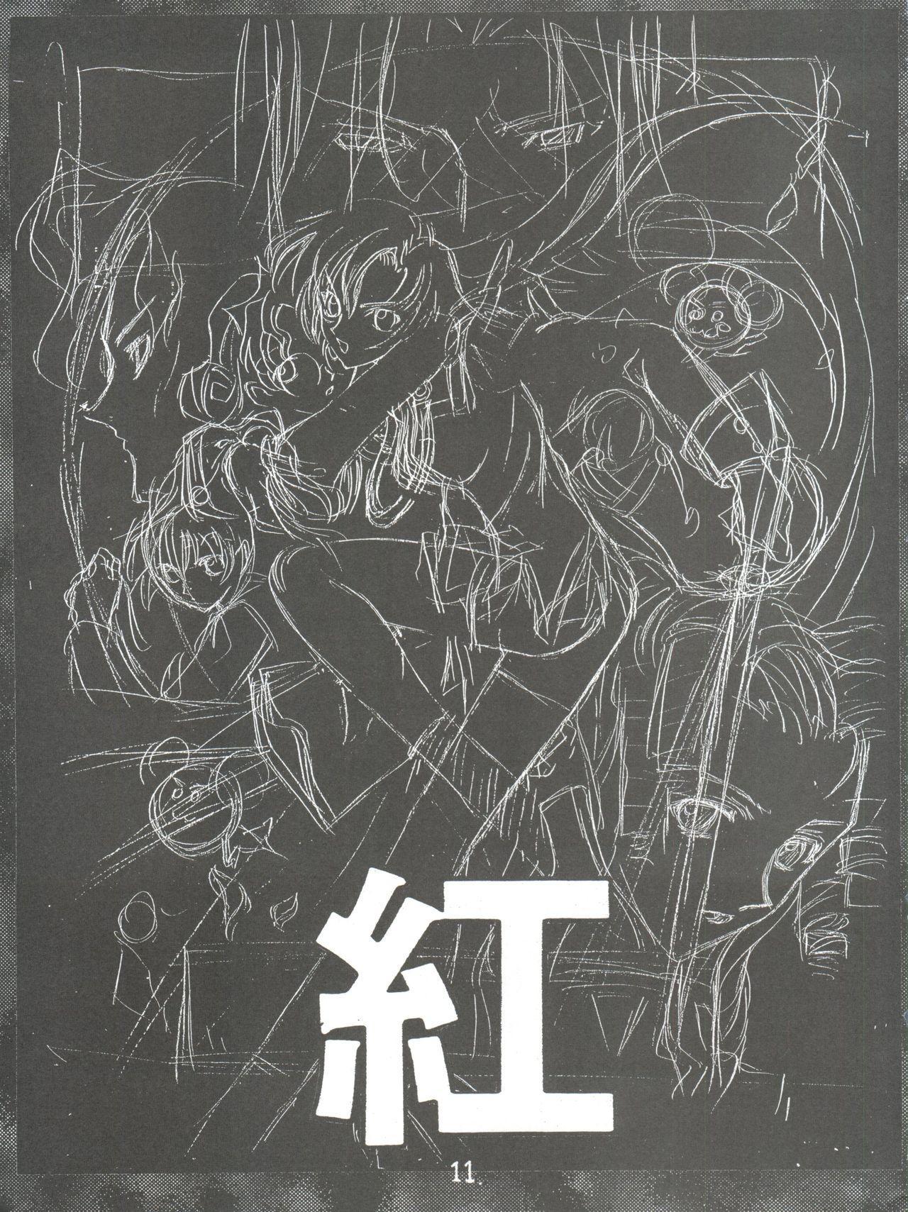 Shinku no Shounen Densetsu 9