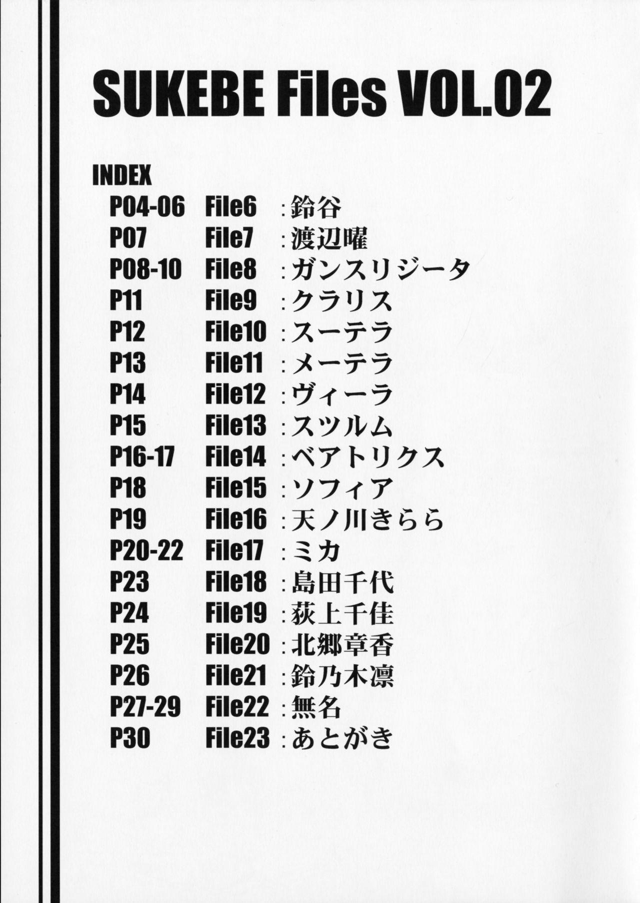 SUKEBE Files VOL.02 1