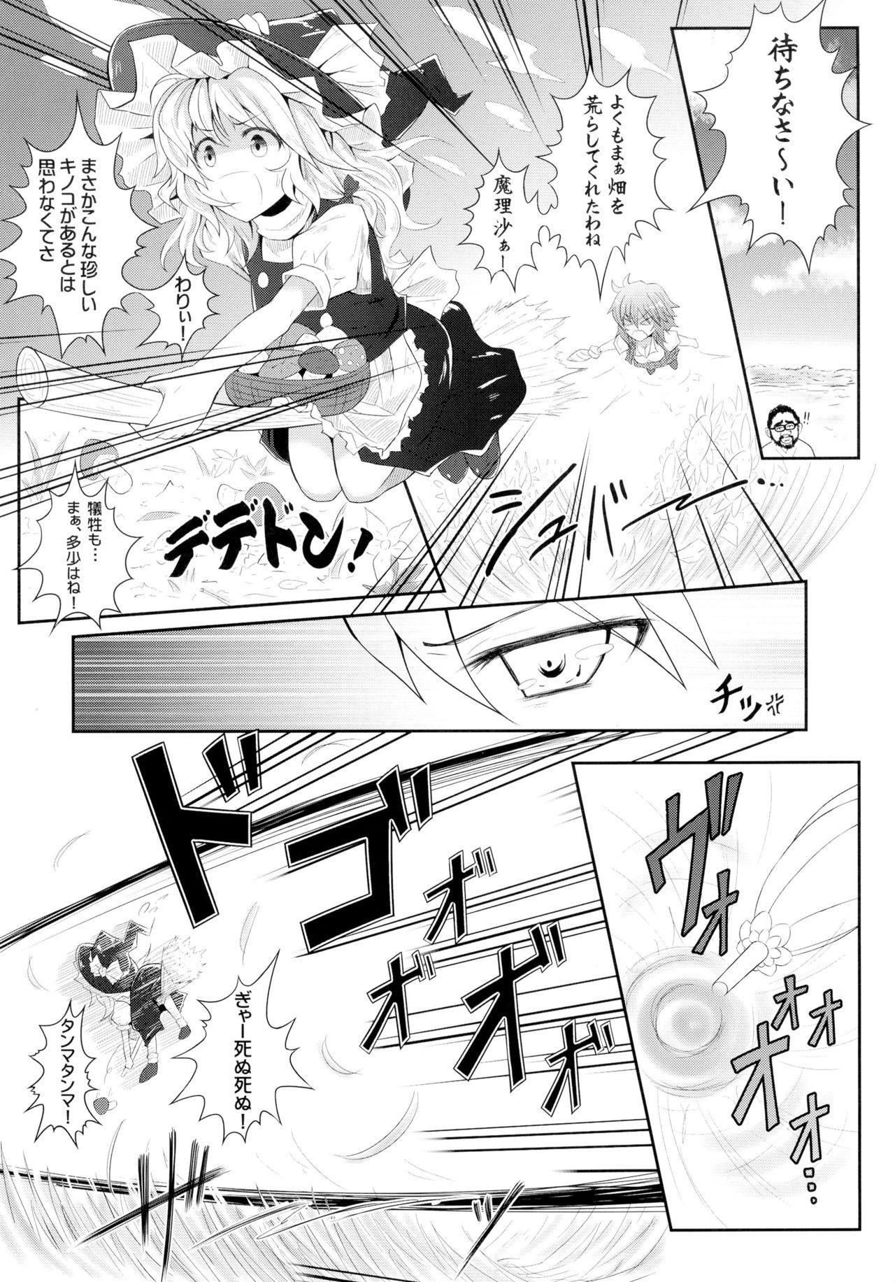 Touhou Ishokujuu 25