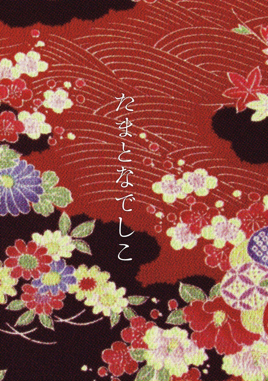 Tama to Nadeshiko 3