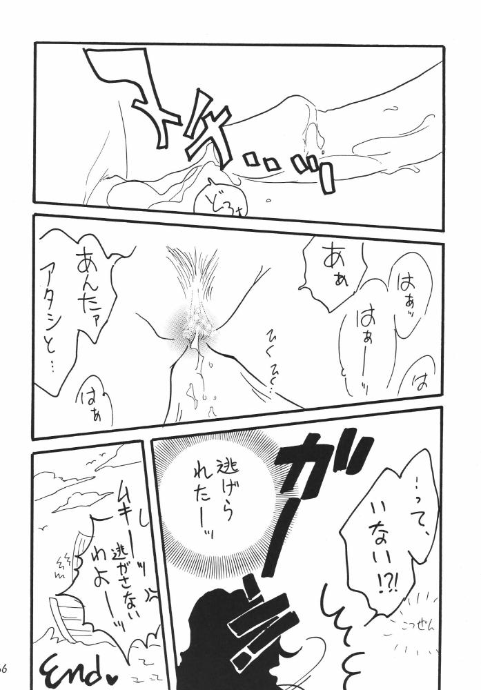 Koukai Nisshi DX 65