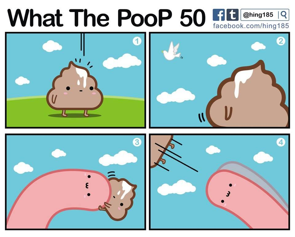 What the PooP 101