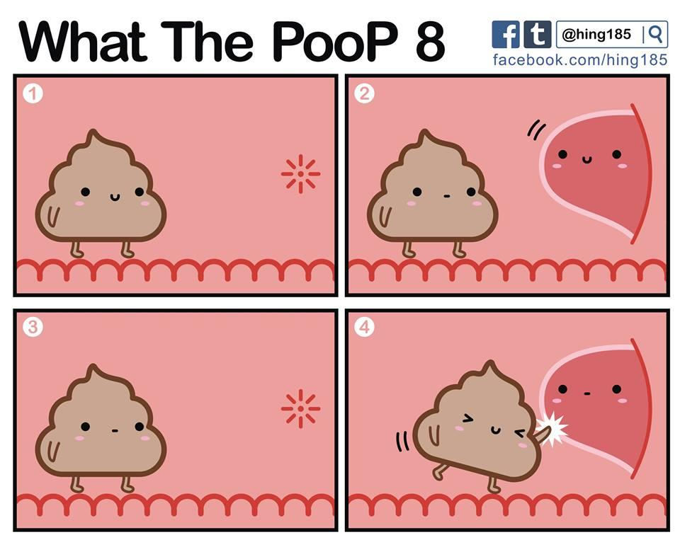 What the PooP 14