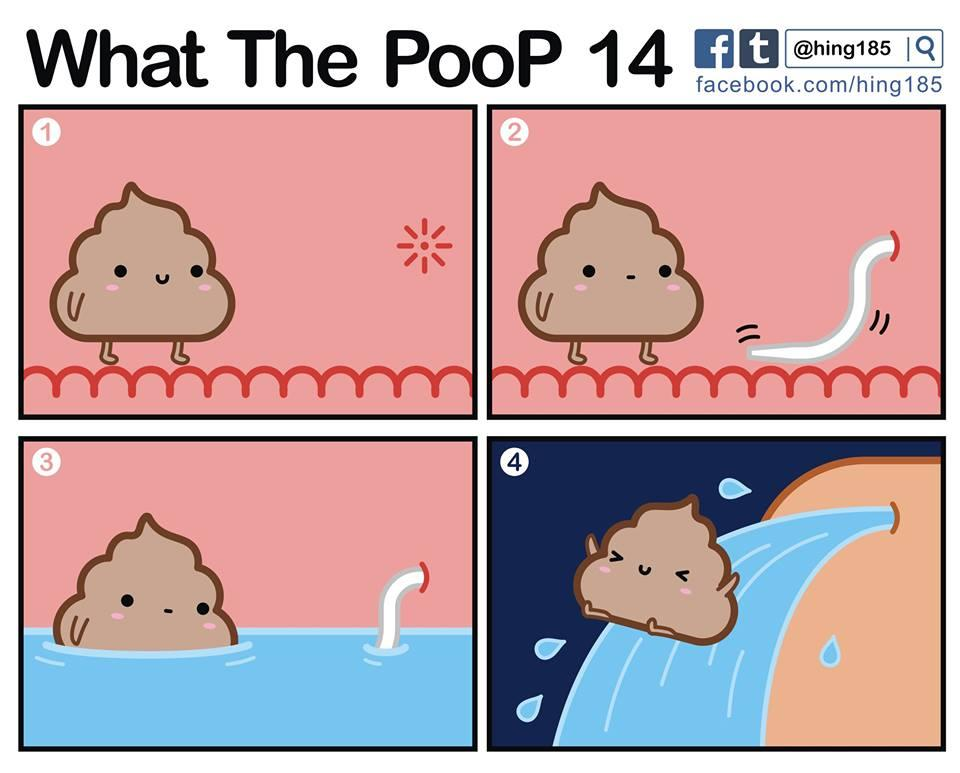 What the PooP 26