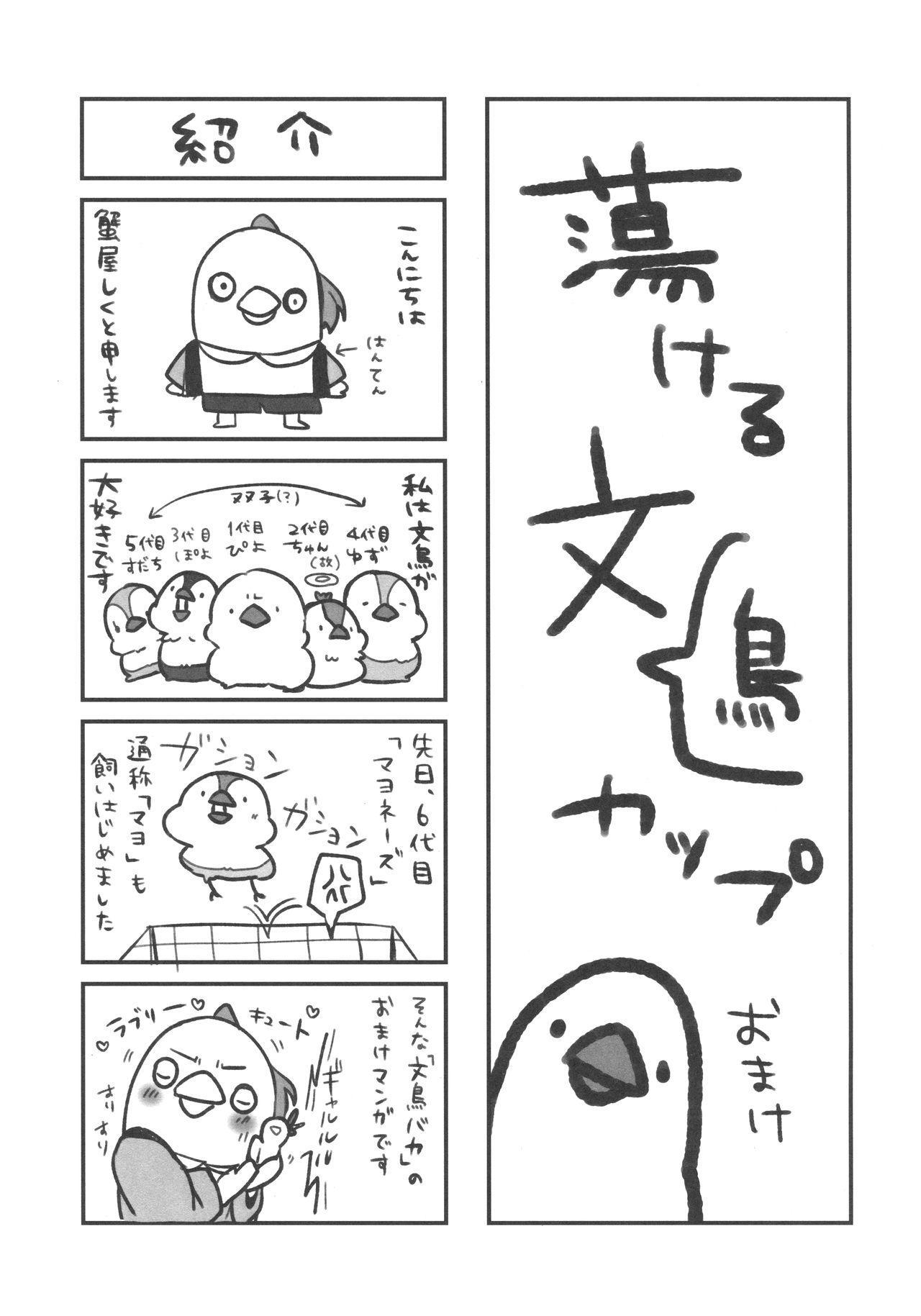 Torokeru Fumi-Cup 22
