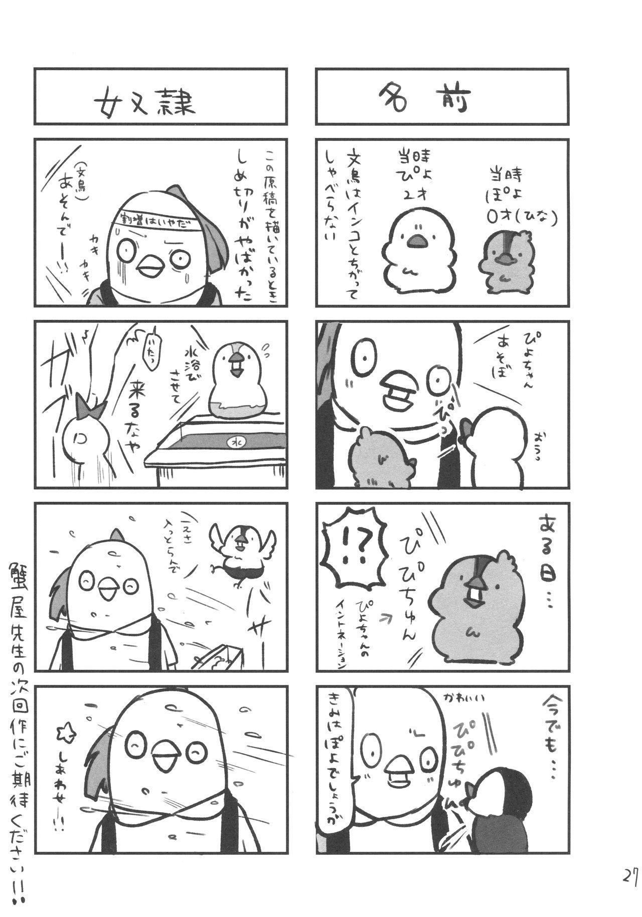 Torokeru Fumi-Cup 24