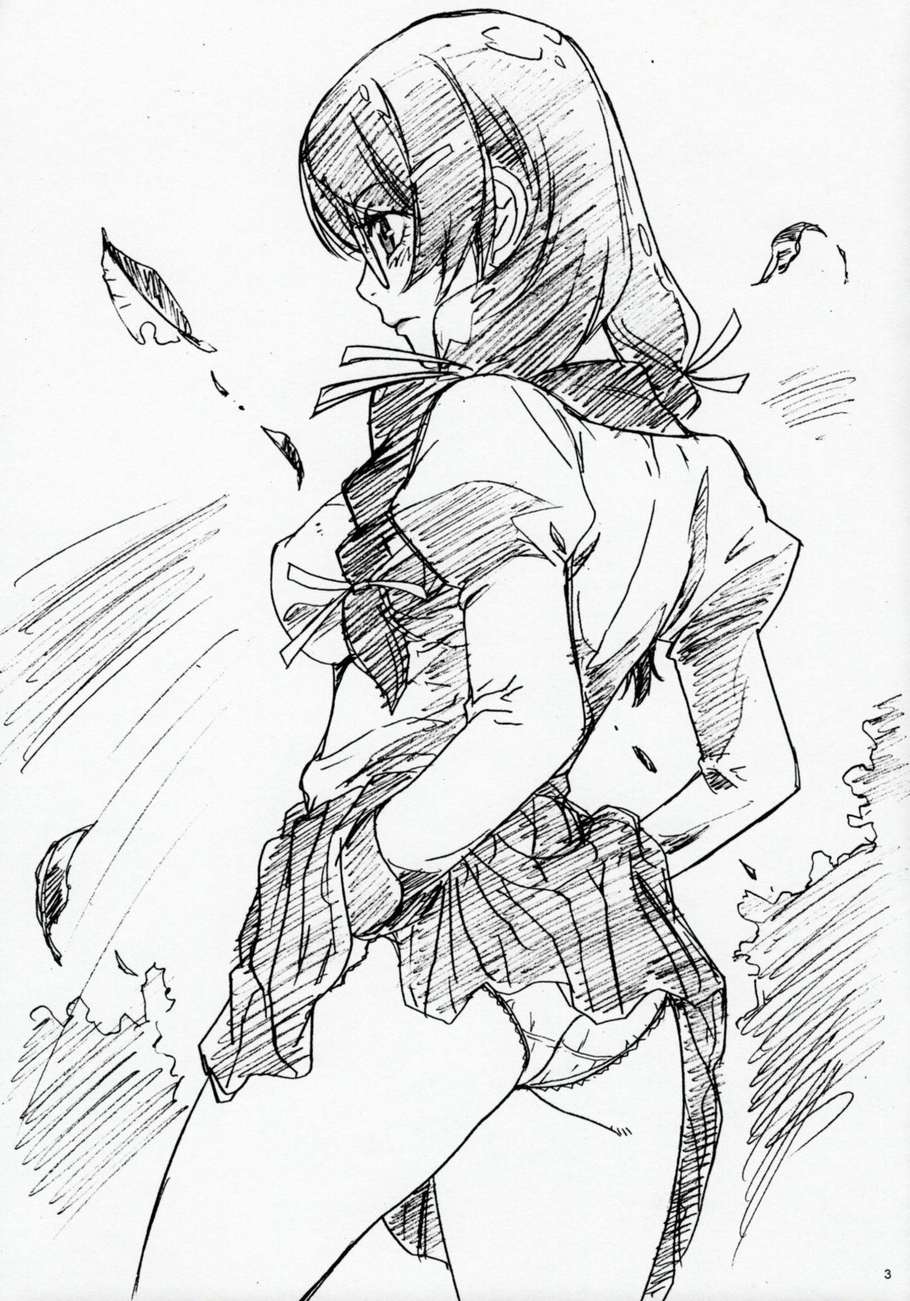 Hanekawa-san no Omake no Hon 2