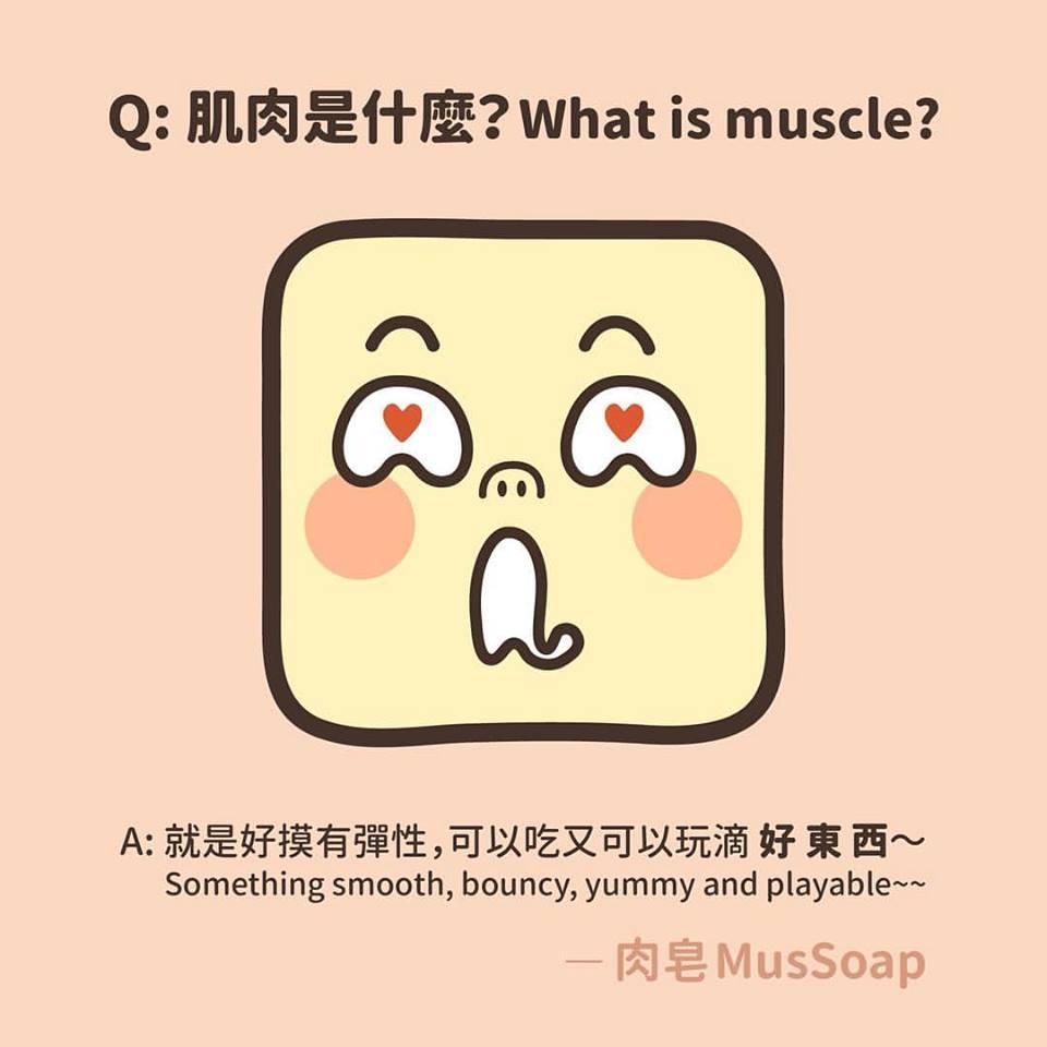 MusSoap 322