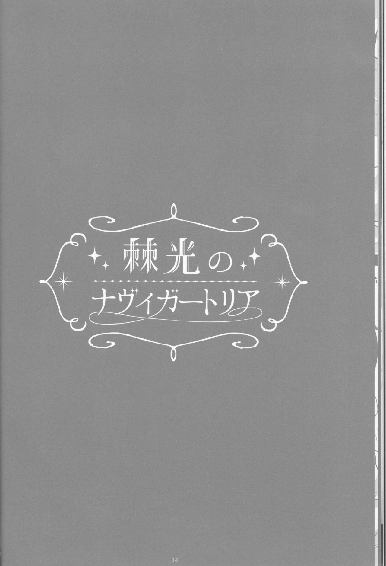 Toge hikari no navu~igātoria book 2(blue exorcist] 11