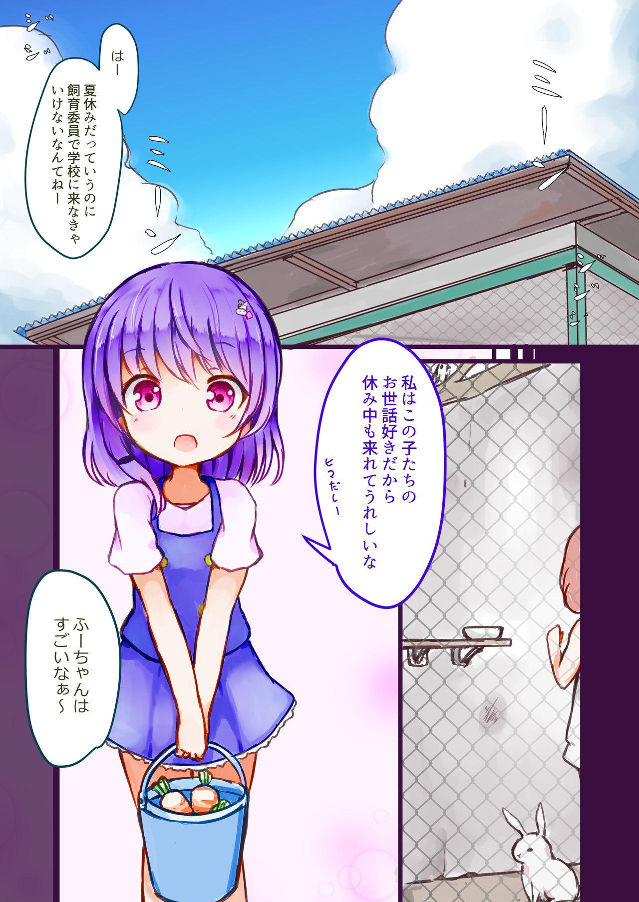 Kibou no Shouwakusei 2