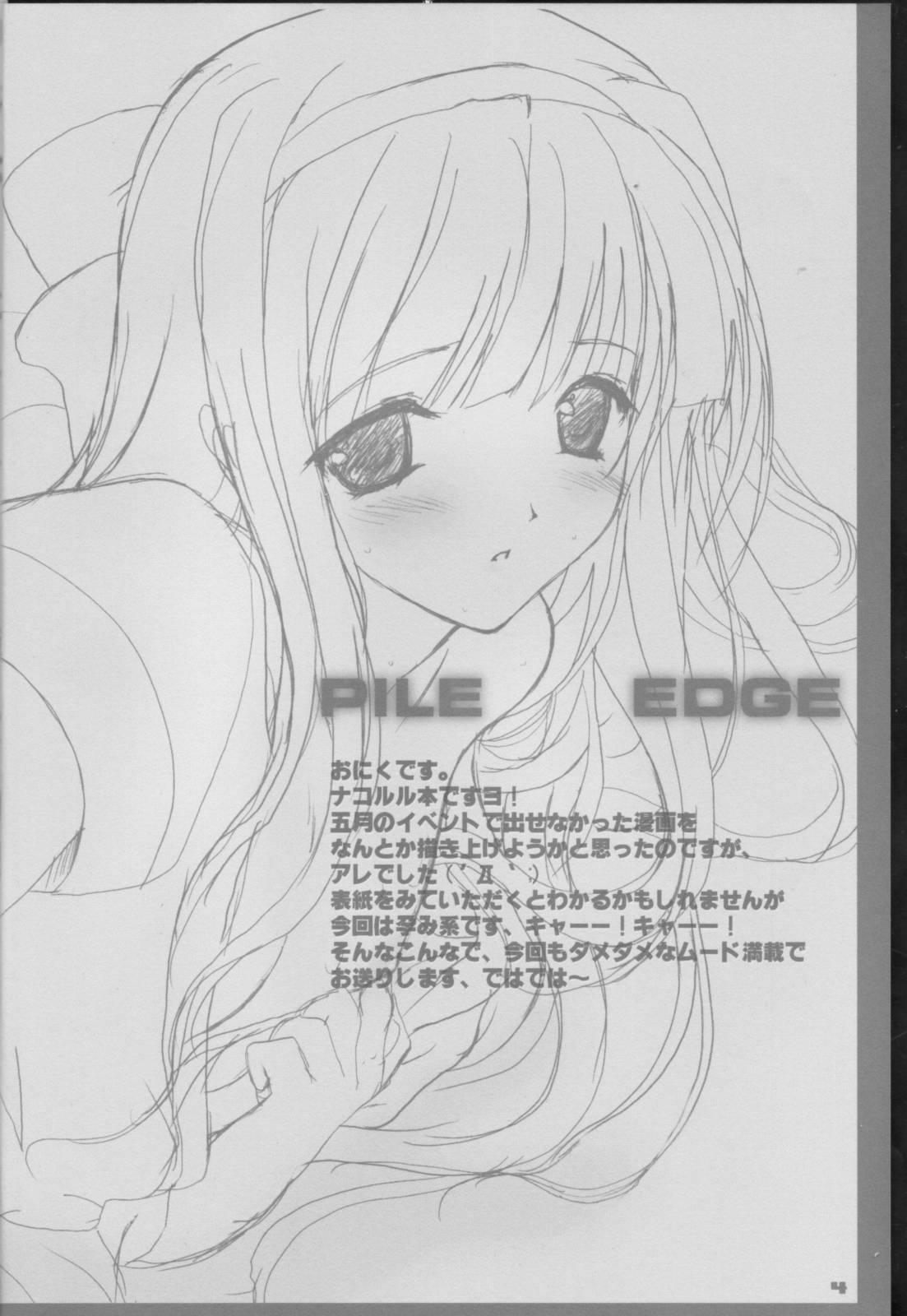 PILE EDGE 1
