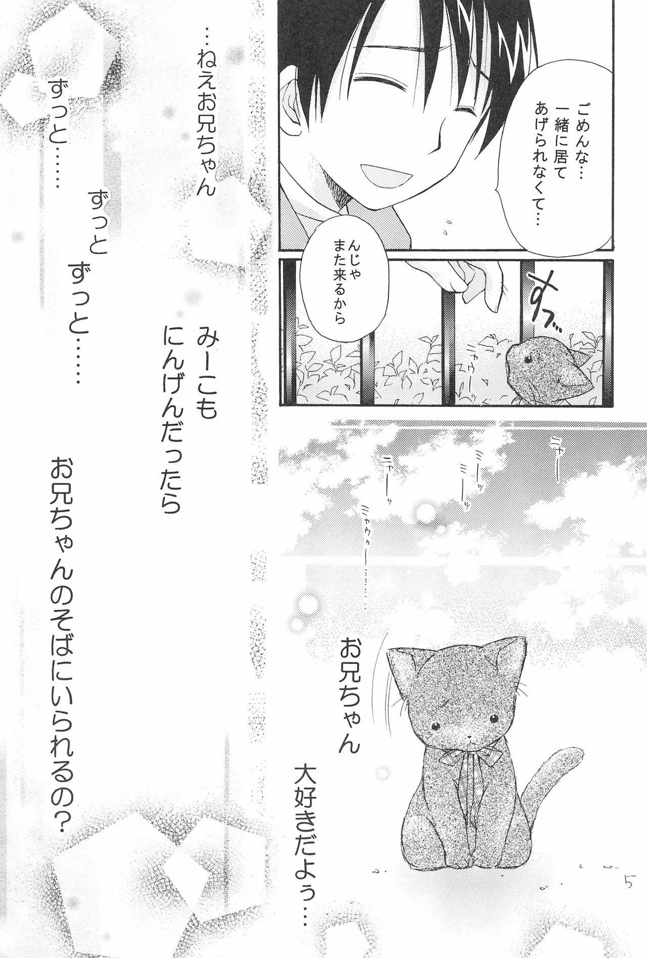 Love Cat 6
