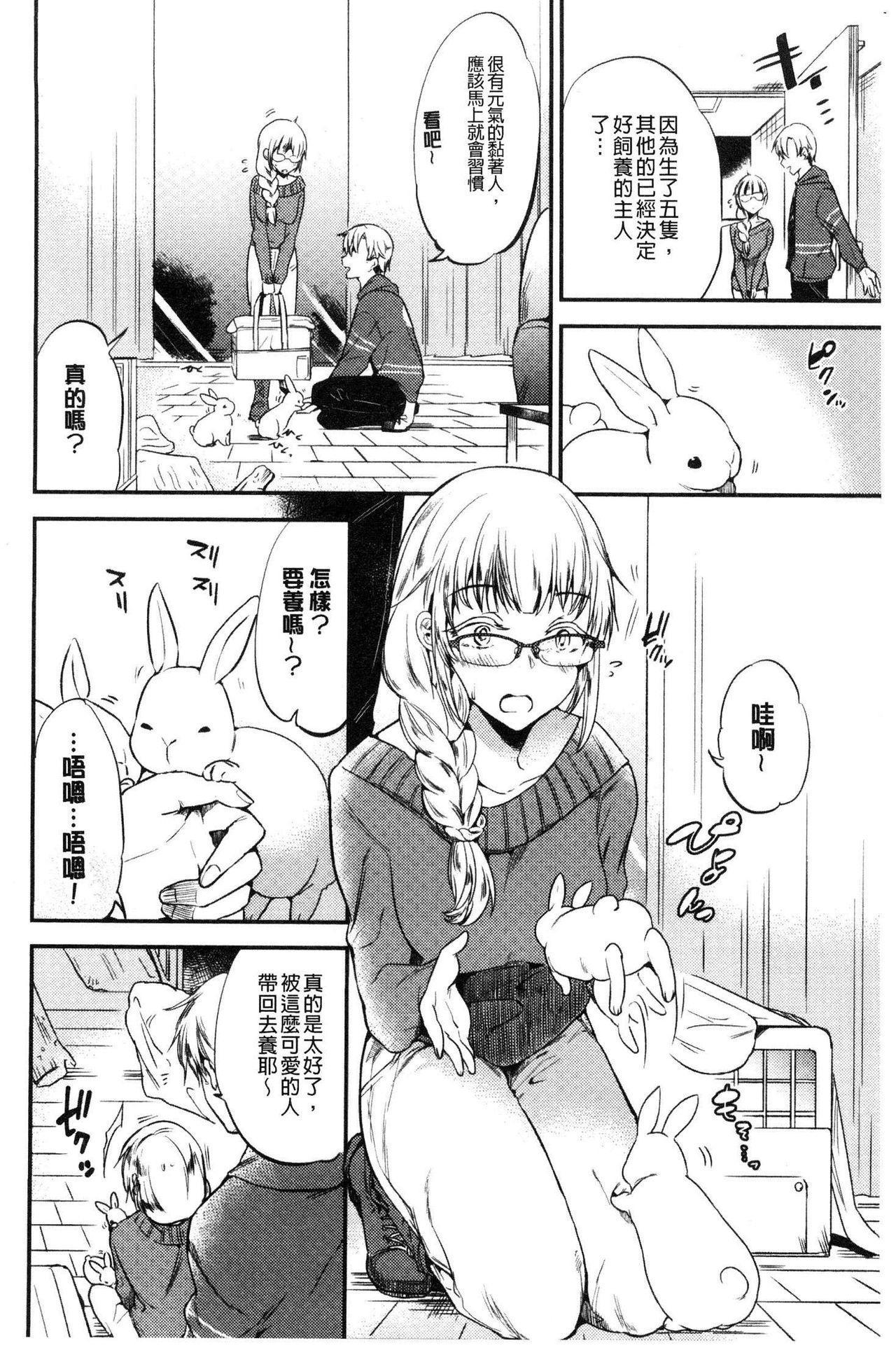Rabbit Paradise 118