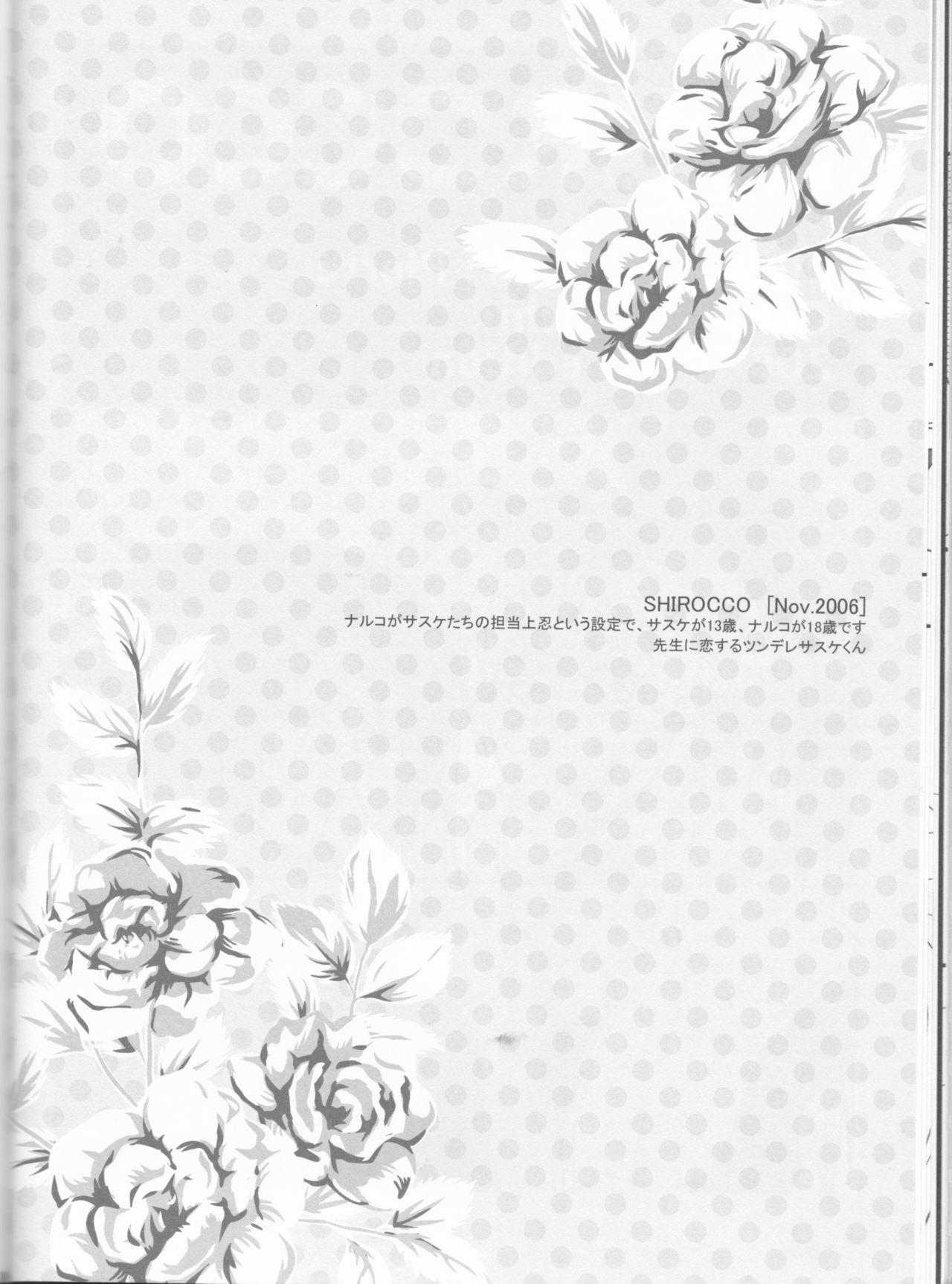 Dream Passport 40