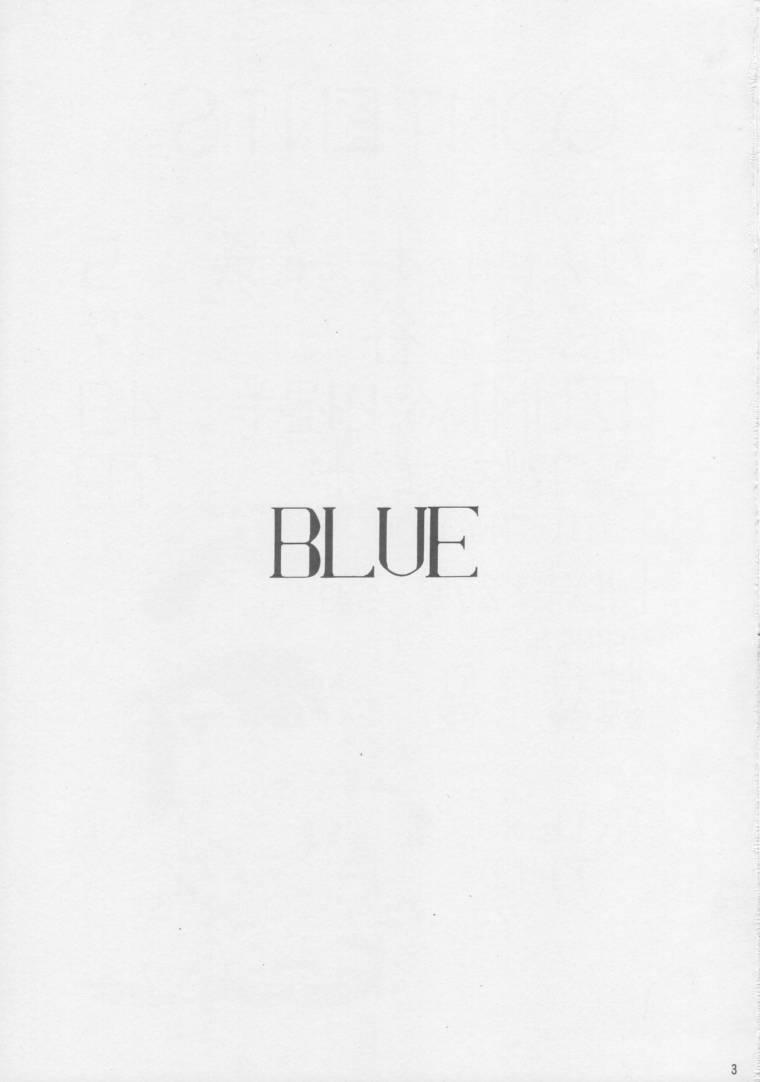 IRIE FILE BLUE 1