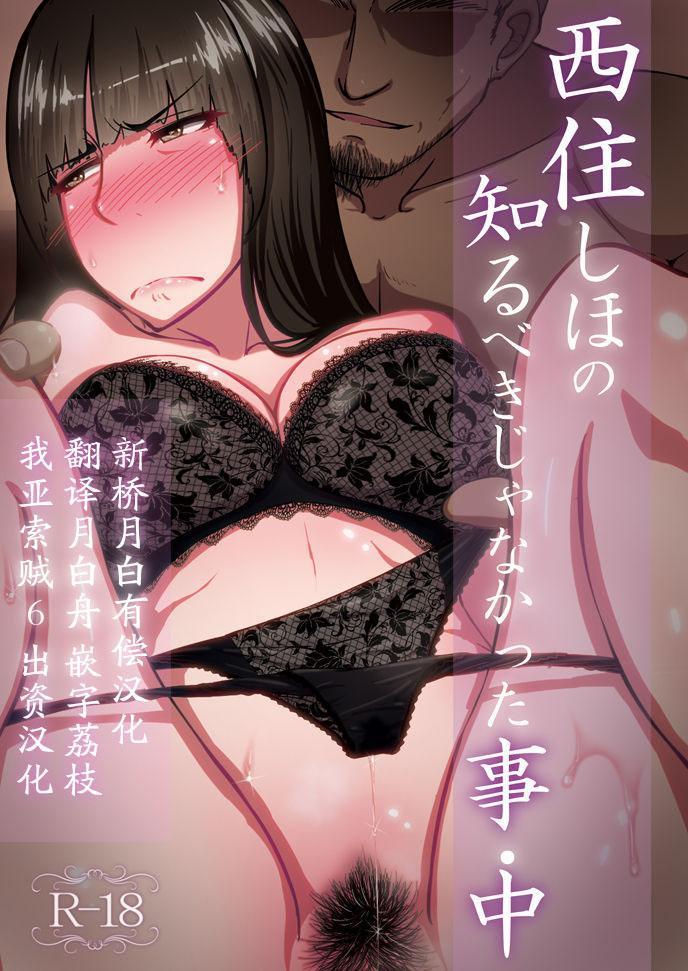 Nishizumi Shiho no Shirubeki ja Nakatta Koto chuu 0