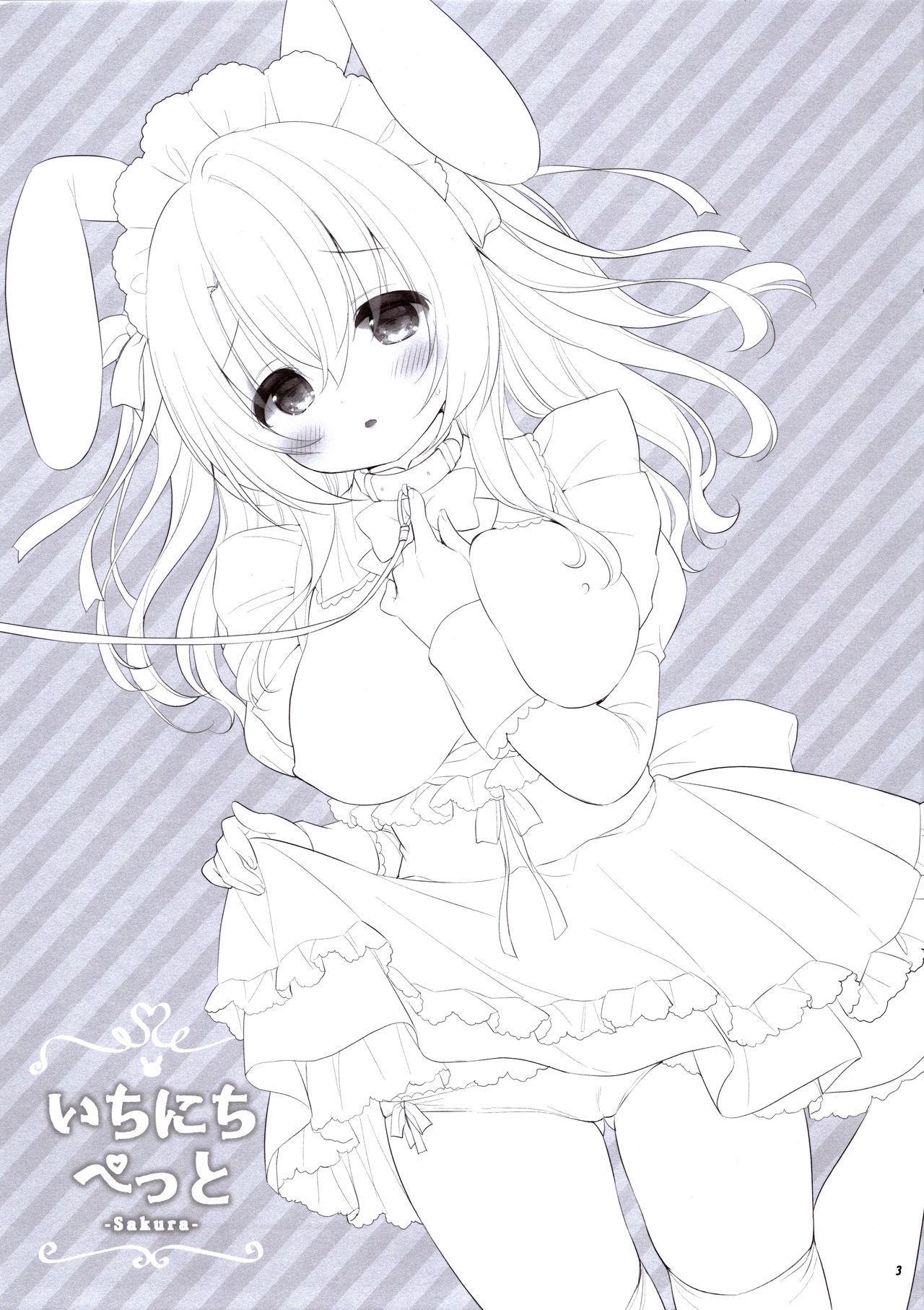 Ichinichi Pet 3