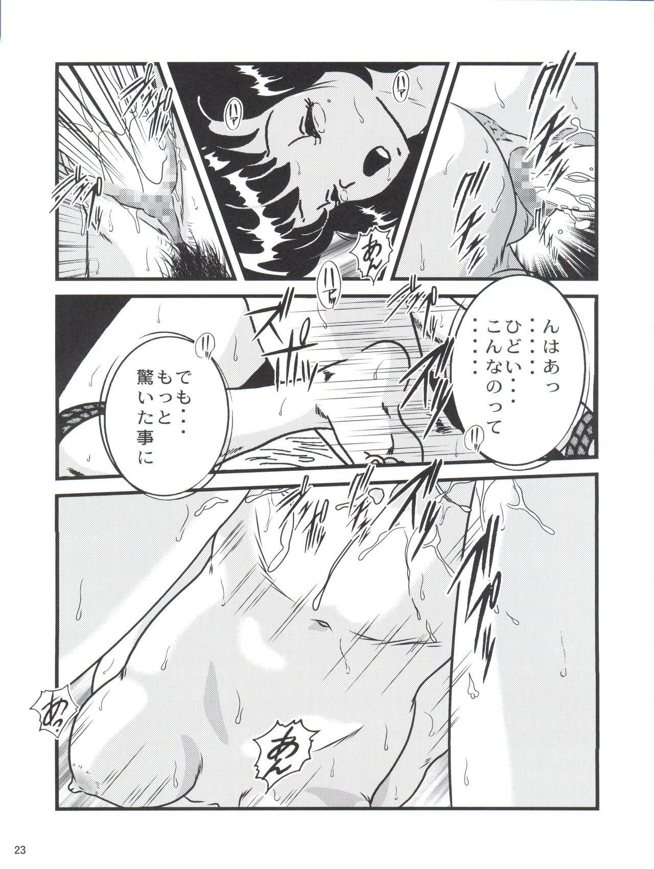 Fairy 18 22