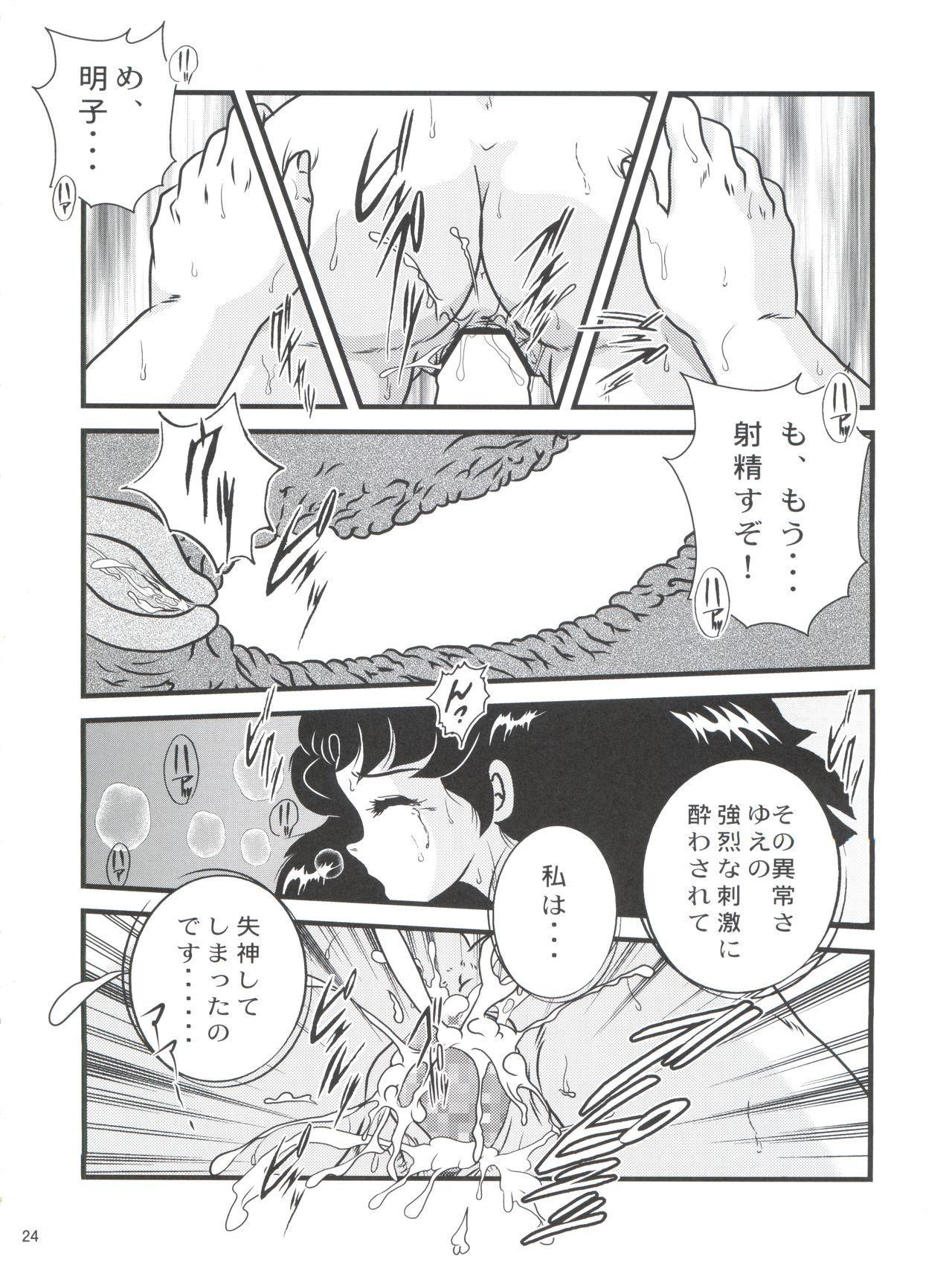 Fairy 18 23