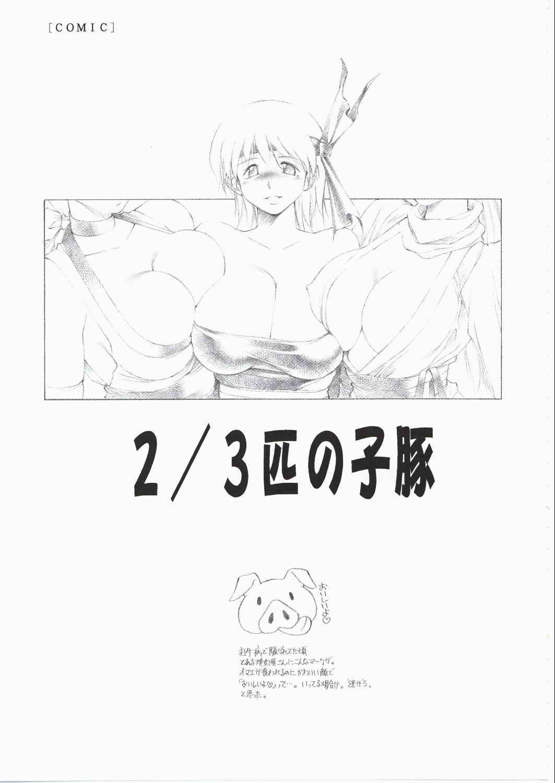(C62) [TIMEST (Tokisaka Mugi)] futa-mise FUTANARI-MISEAI (Dead or Alive) 3