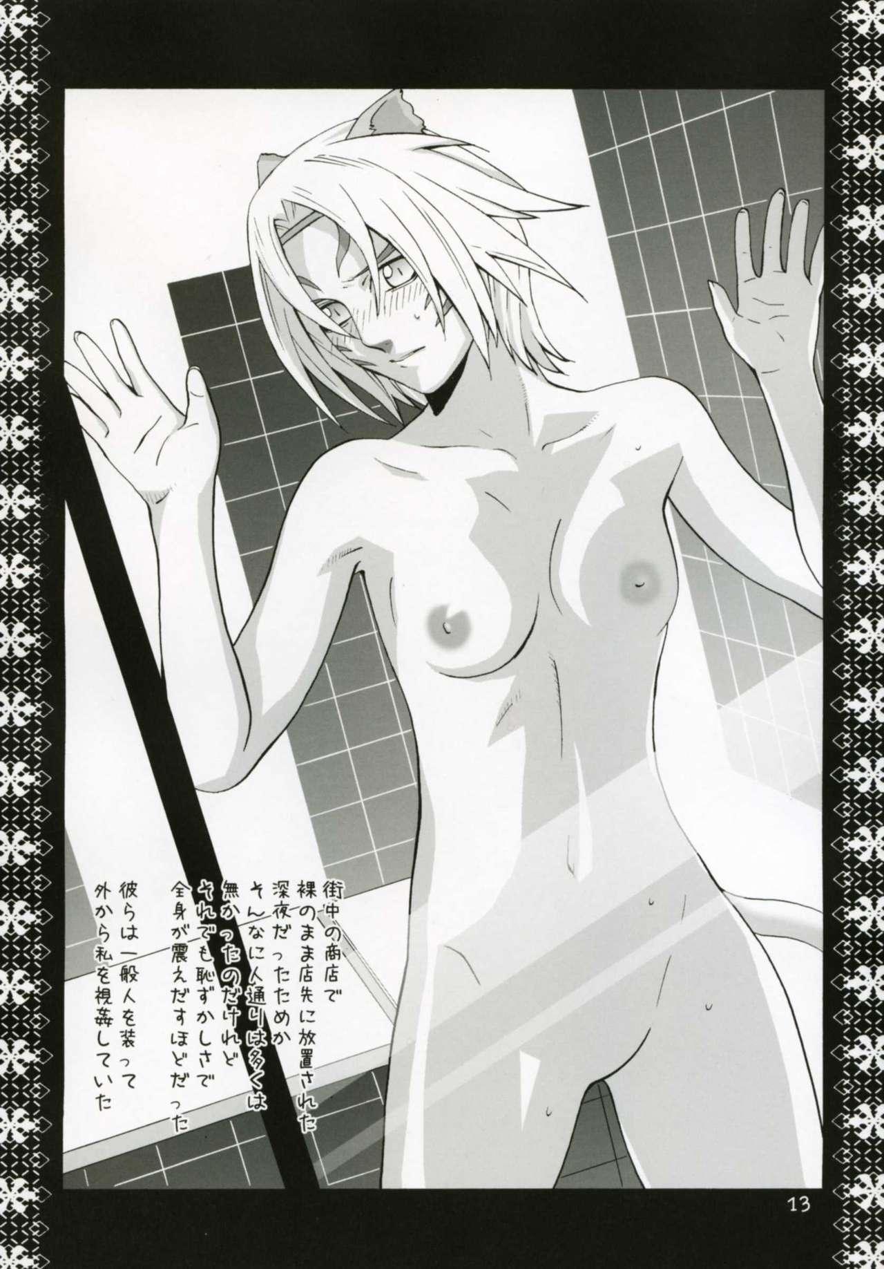 Mithra Choukyou Enikki 11