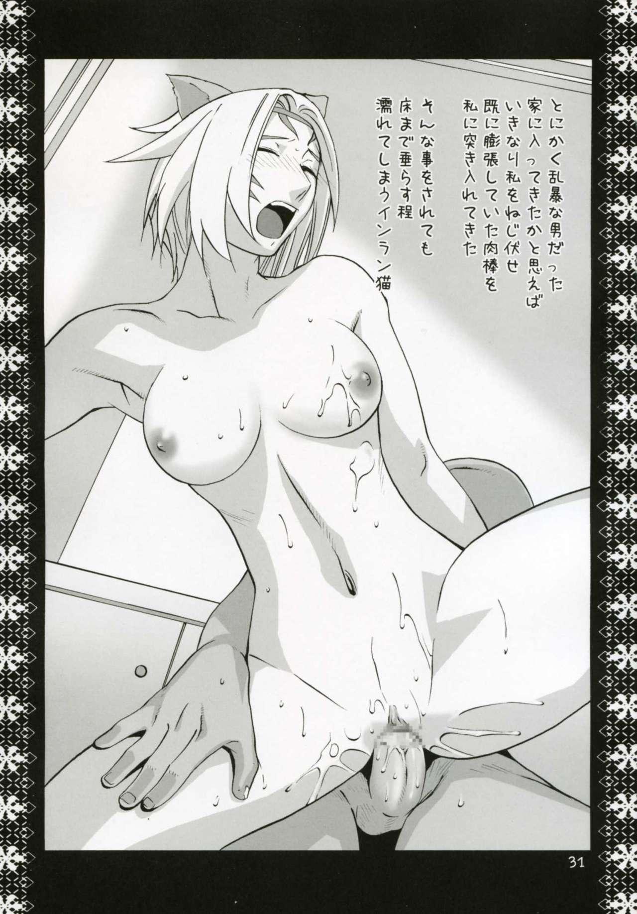 Mithra Choukyou Enikki 29