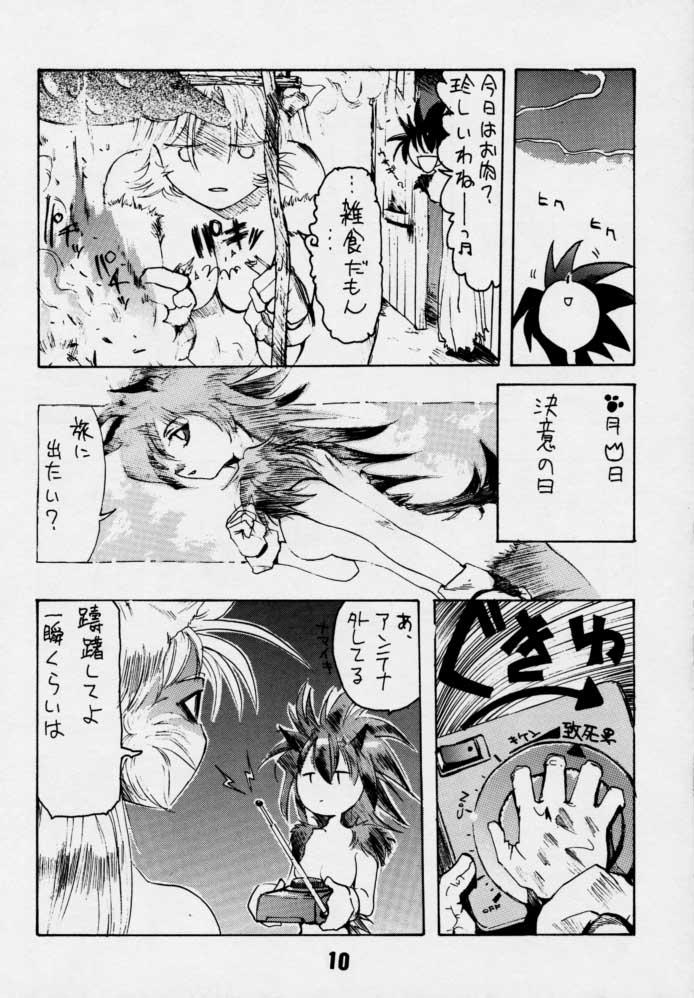 Sonic & Tails 8