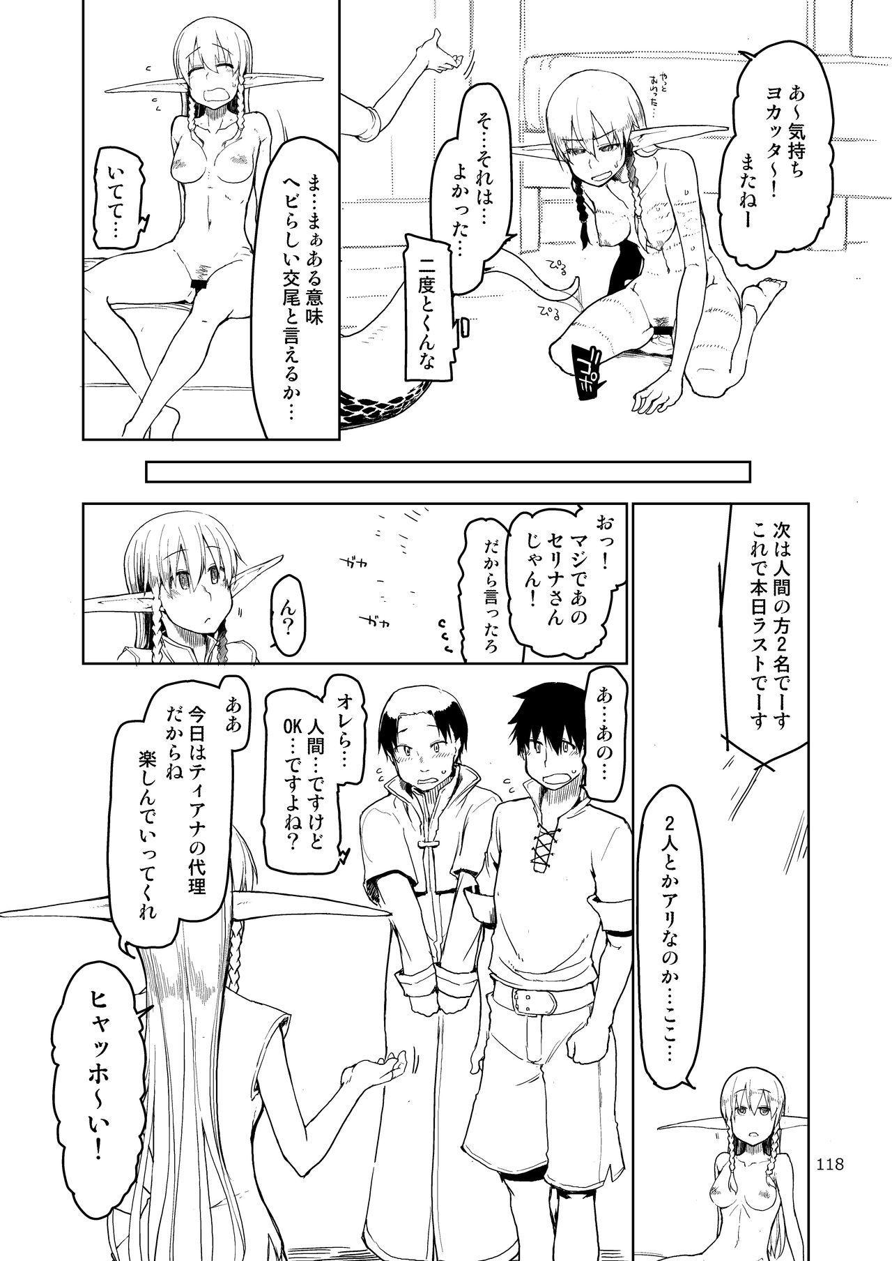 Dosukebe Elf no Ishukan Nikki Matome 2 118