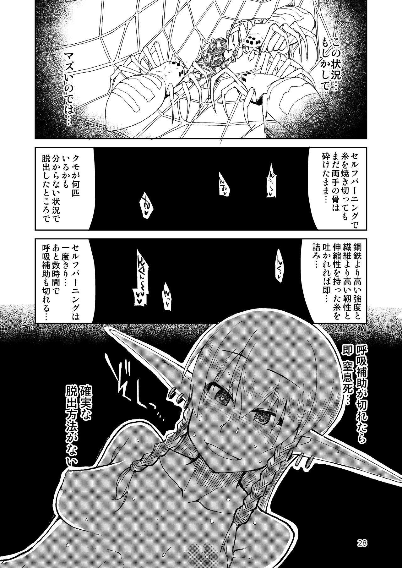 Dosukebe Elf no Ishukan Nikki Matome 2 28