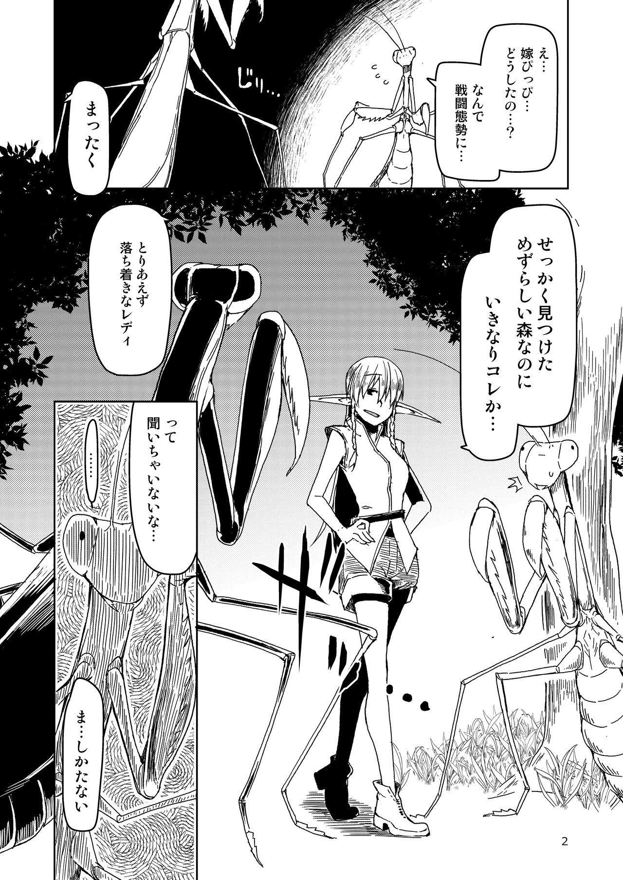 Dosukebe Elf no Ishukan Nikki Matome 2 2