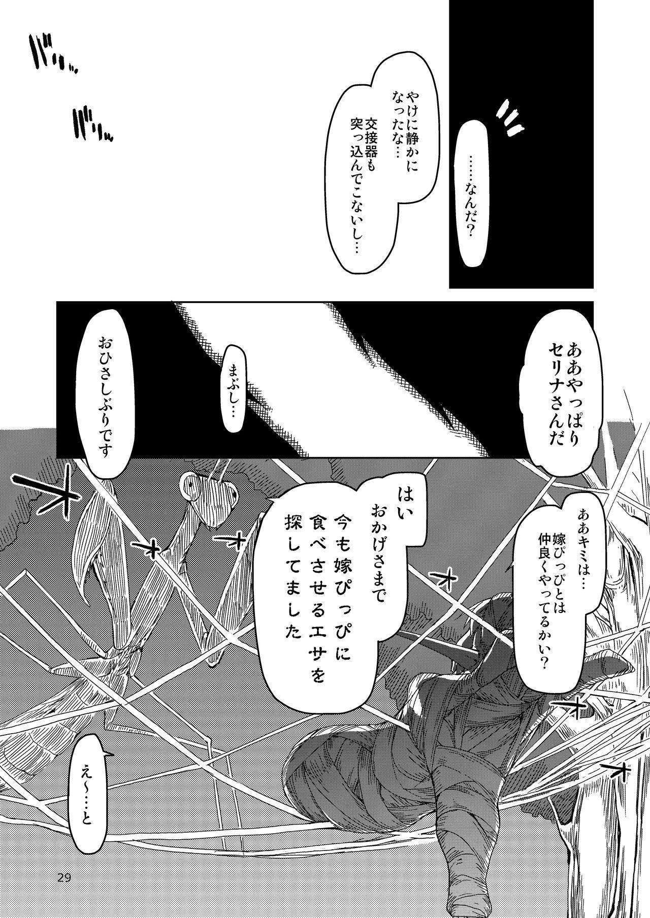 Dosukebe Elf no Ishukan Nikki Matome 2 29