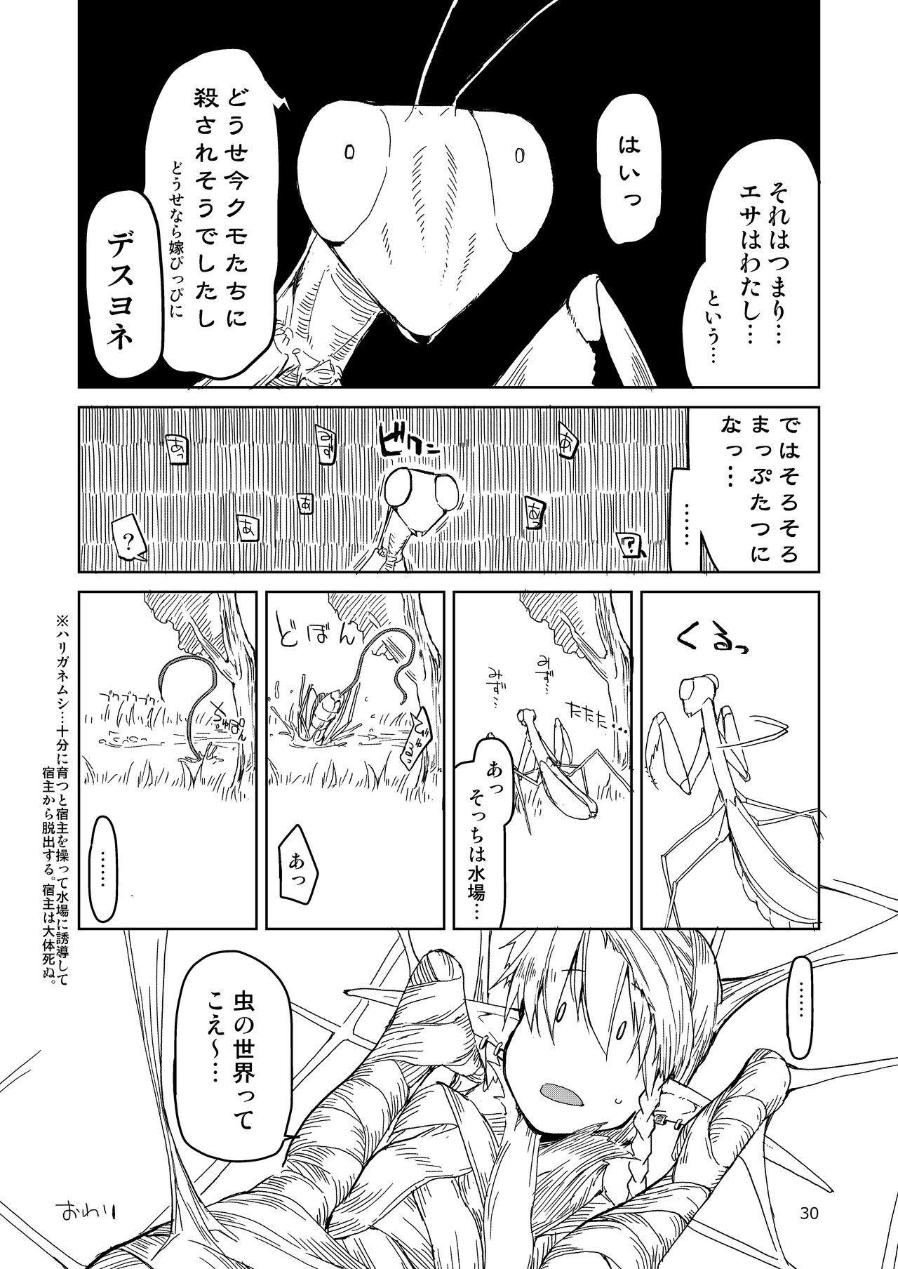 Dosukebe Elf no Ishukan Nikki Matome 2 30