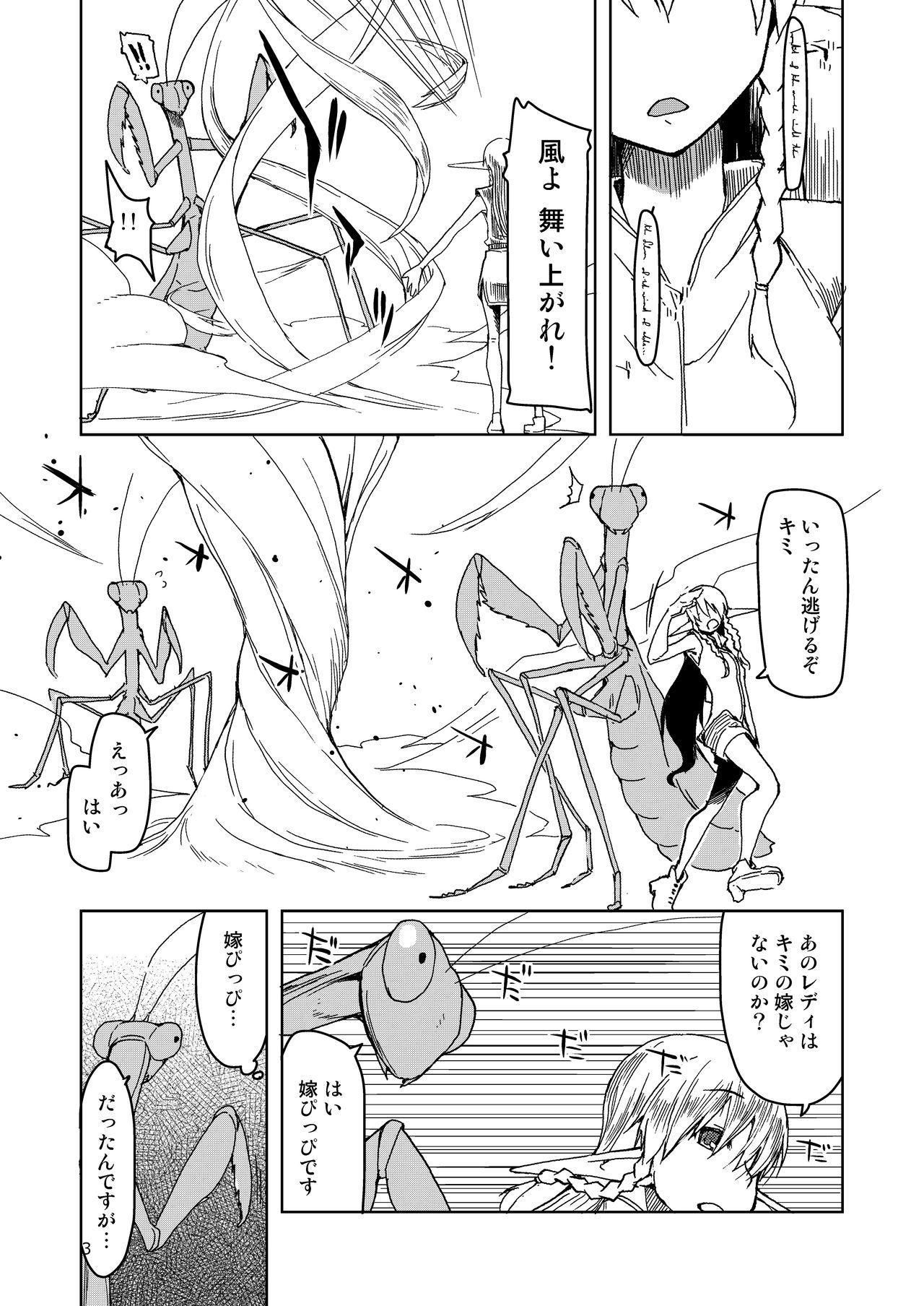 Dosukebe Elf no Ishukan Nikki Matome 2 3