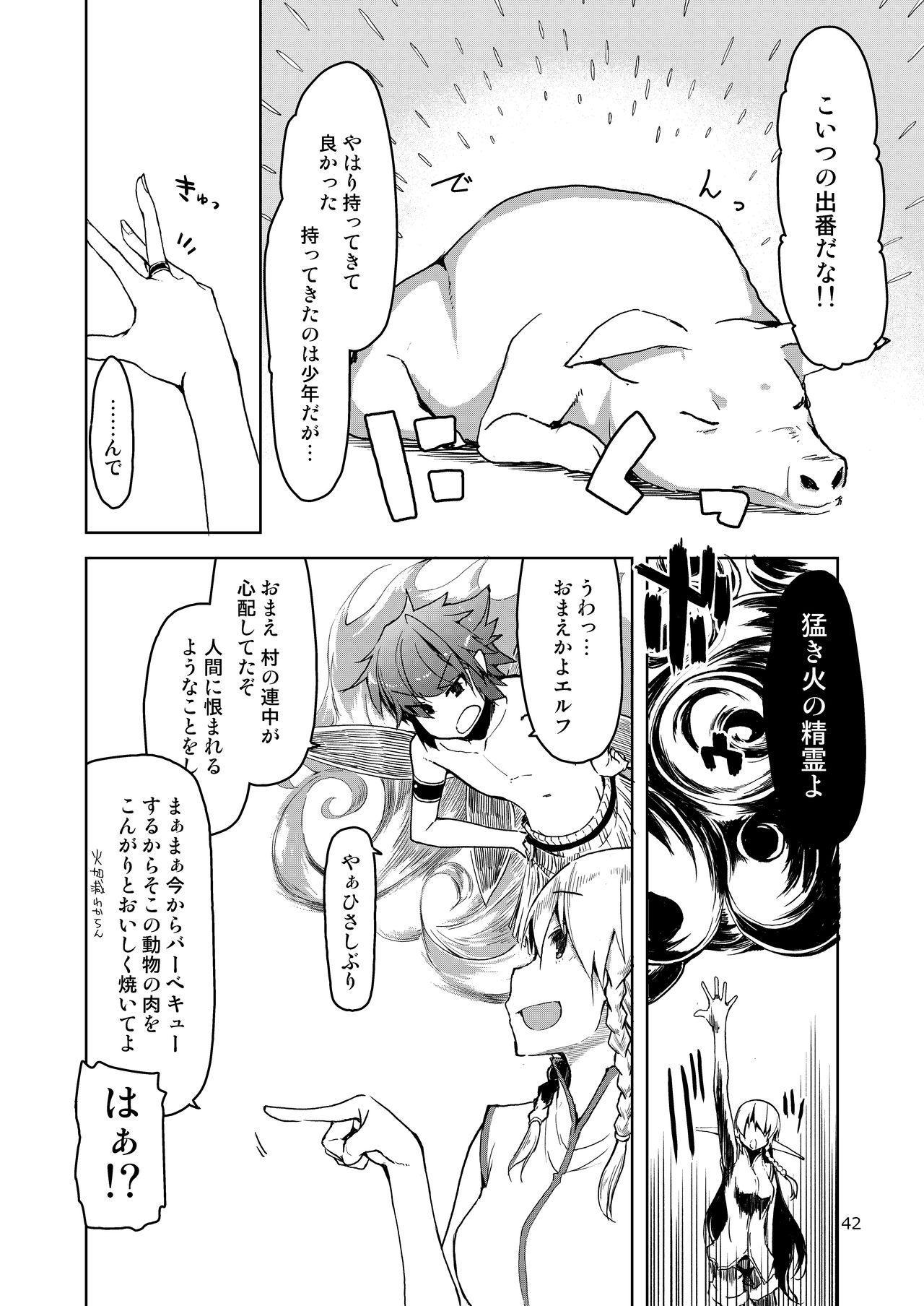 Dosukebe Elf no Ishukan Nikki Matome 2 42