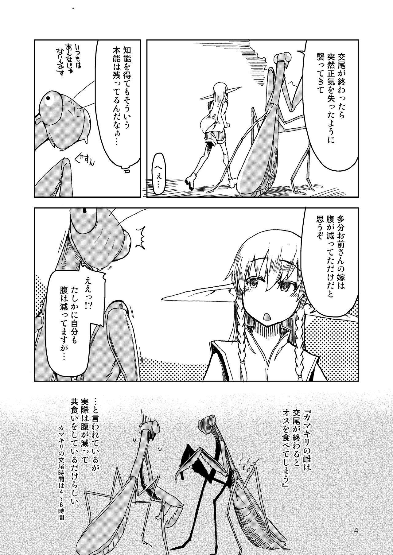 Dosukebe Elf no Ishukan Nikki Matome 2 4