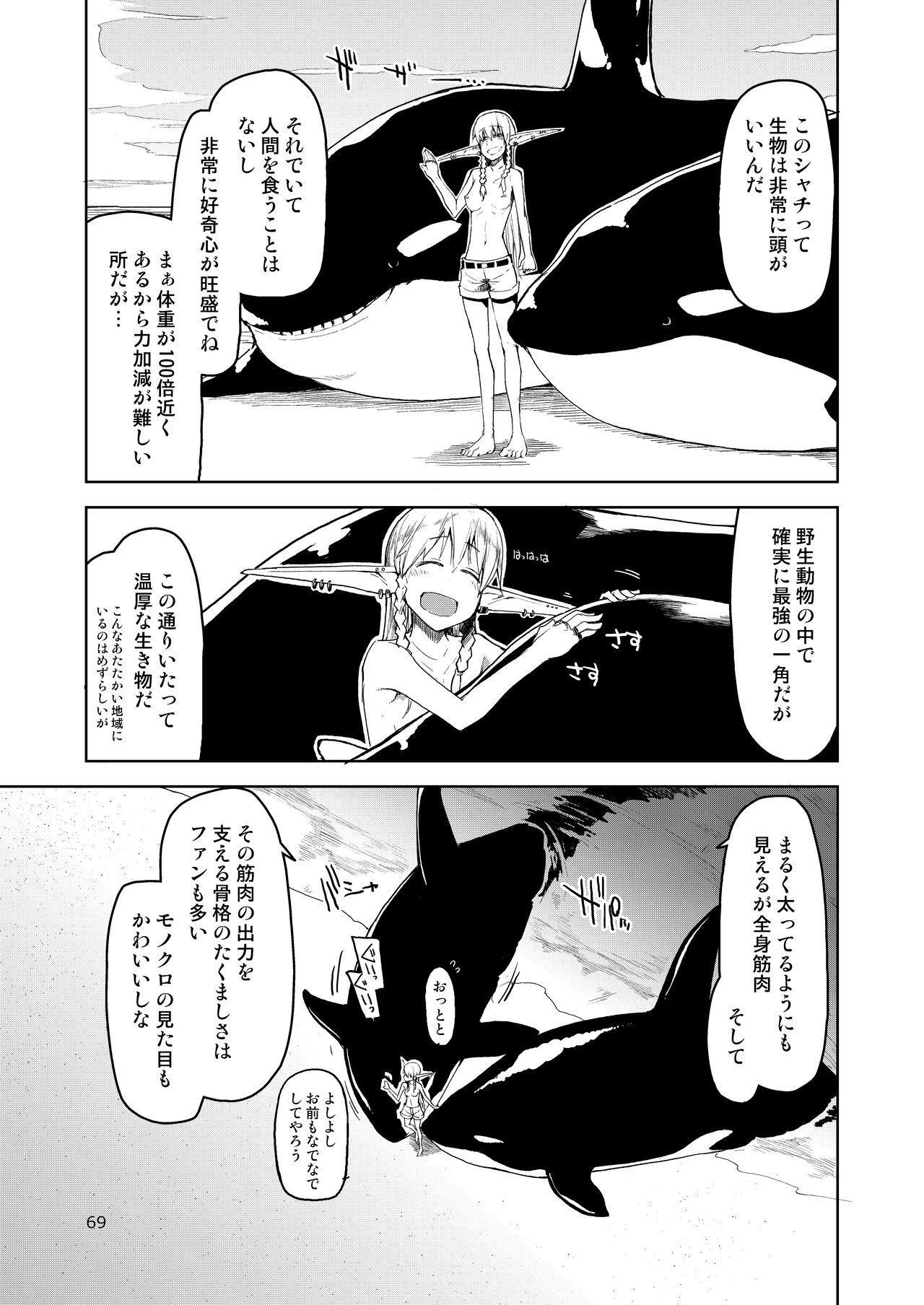 Dosukebe Elf no Ishukan Nikki Matome 2 69