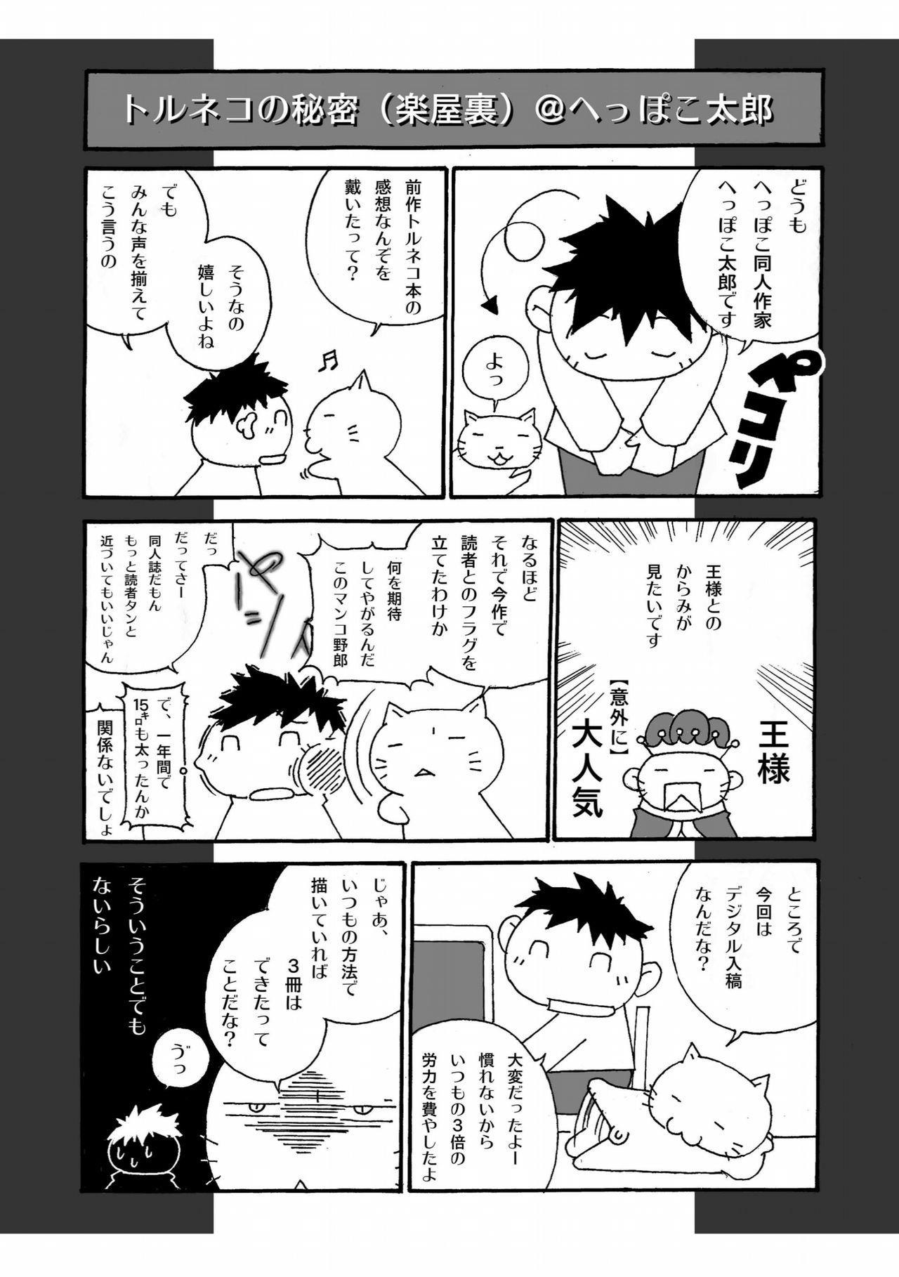 Torneko no Himitsu 27