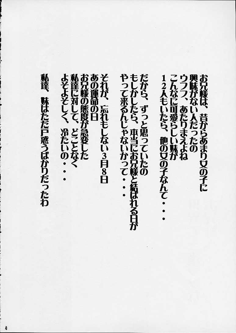 Sakuya Youkaiden 2