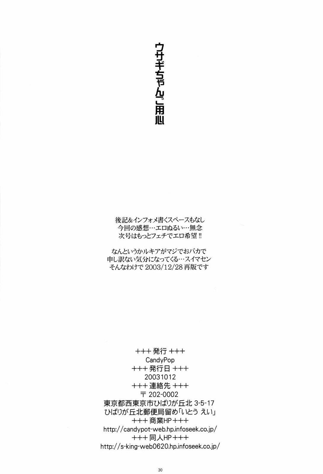 Usagi-chan Goyoujin 28