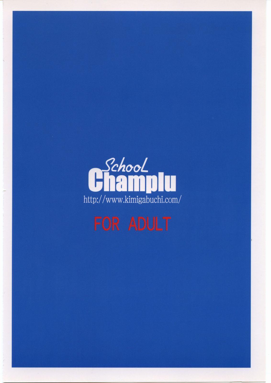 School Champlu 65