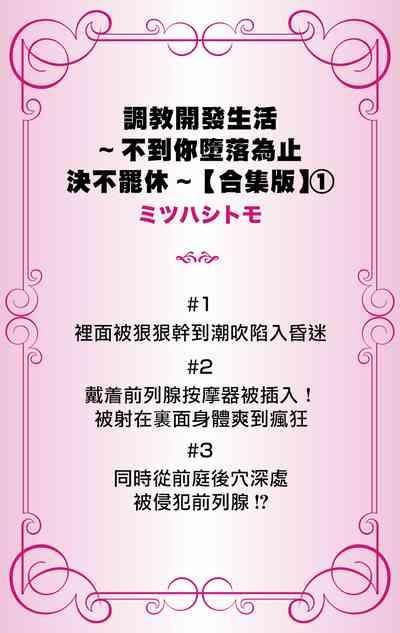 Choukyou Kaihatsu Seikatsu| 调教开发生活1-3 1