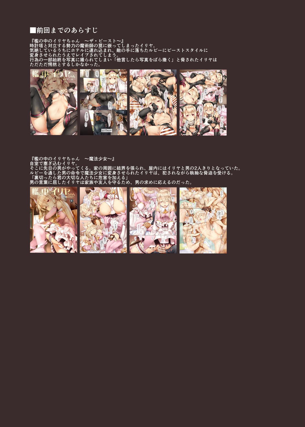 Ori no Naka no Illya-chan 2